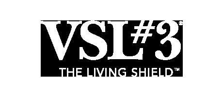 VSL#3 Logo